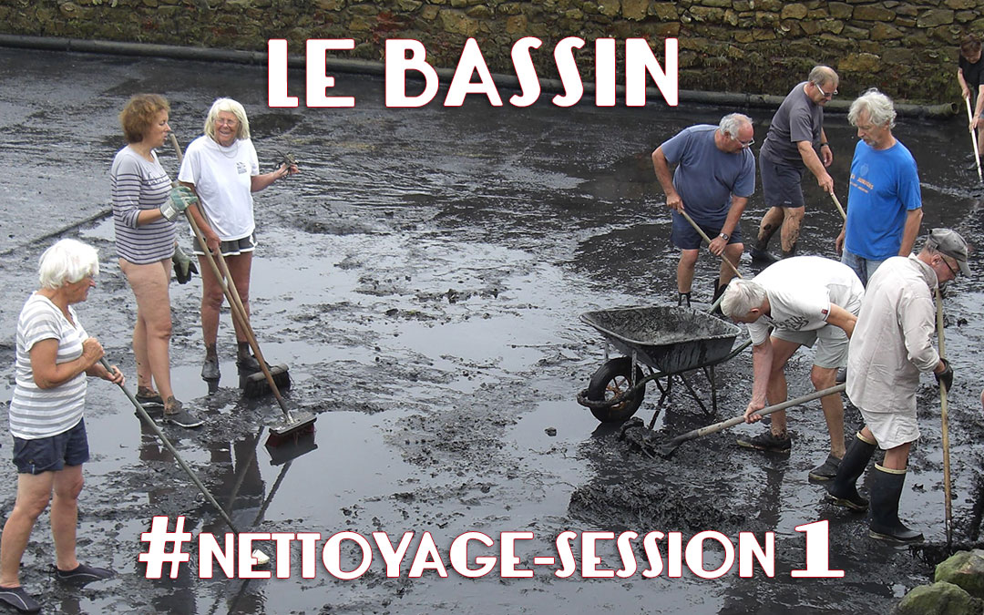 Nettoyage du bassin  #session 1
