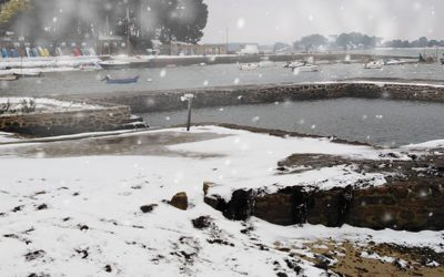 Il neige sur le Logeo !